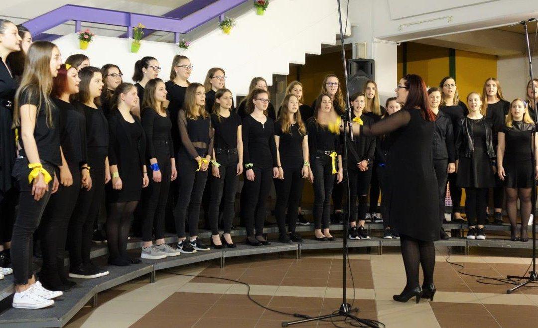 Prvi revijalni nastop pevskega zbora ETrŠ Brežice